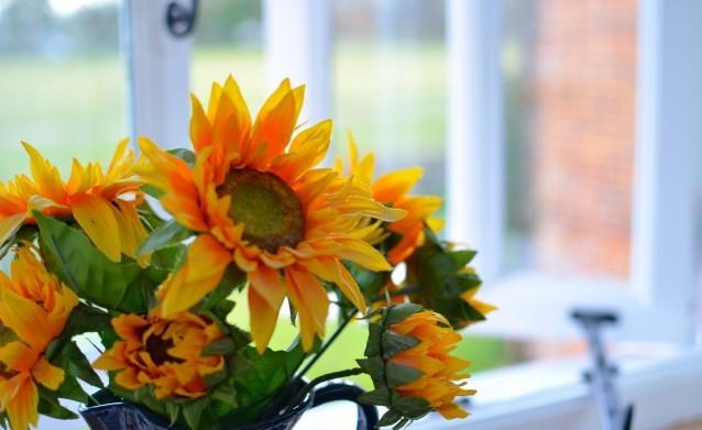 Granary_Sunflowers
